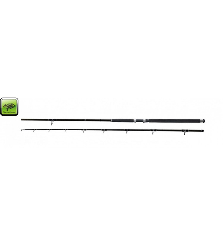 Prut Deluxe Catfish 2,4m 400g