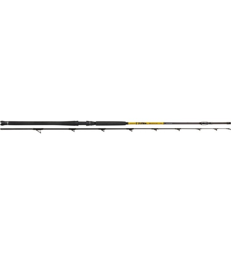 Prut Catgear Titan Catfish Fight 3m/400g