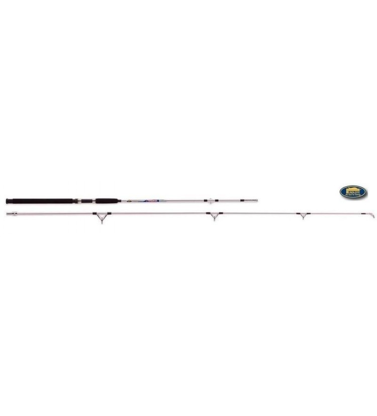 Prut LINEAEFFE Pro Corsar 2,10m, 20-60g
