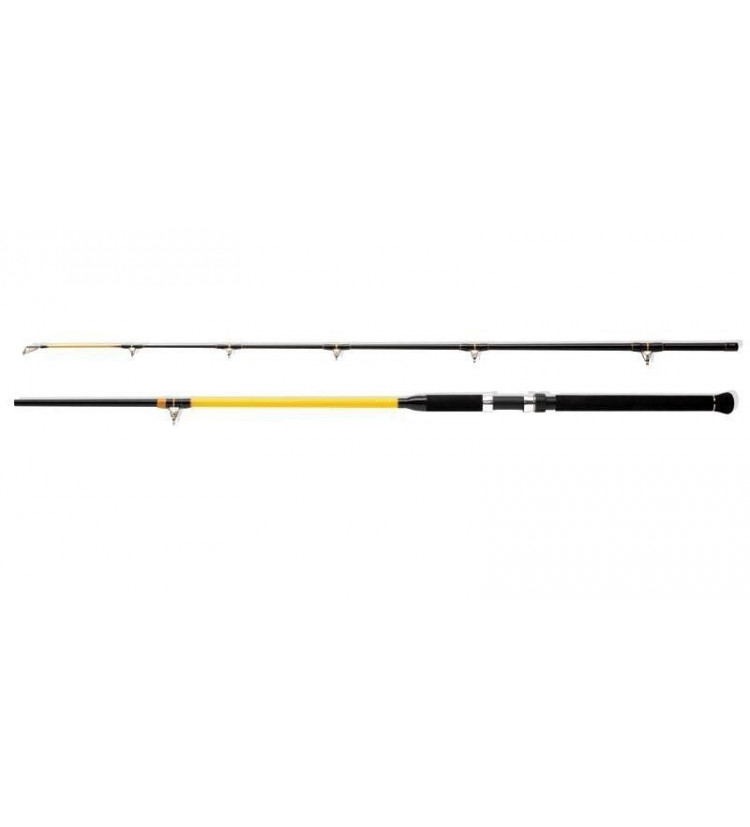 Prut WFT Never Crack Catfish Boat 2,10m, 250-1000g